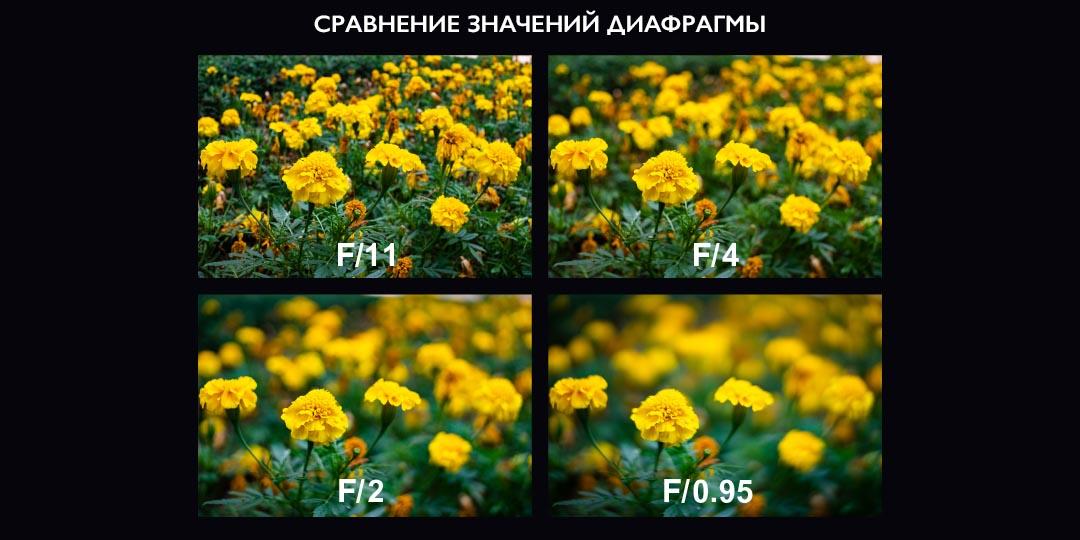 Объектив Laowa Argus 33mm f/0.95 CF APO